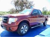 2014 Sunset Ford F150 STX SuperCab #92088783