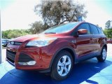 2014 Sunset Ford Escape SE 1.6L EcoBoost #92088782