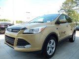 2014 Karat Gold Ford Escape SE 1.6L EcoBoost #92138204