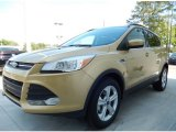 2014 Karat Gold Ford Escape SE 1.6L EcoBoost #92138193