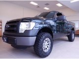 2014 Green Gem Ford F150 XL Regular Cab #92138192