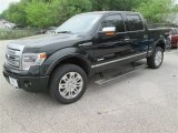 2014 Tuxedo Black Ford F150 Platinum SuperCrew 4x4 #92194302