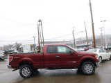 2014 Sunset Ford F150 XLT SuperCab 4x4 #92265034