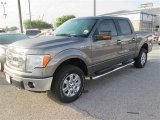 2014 Sterling Grey Ford F150 XLT SuperCrew 4x4 #92265001