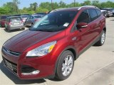 2014 Sunset Ford Escape Titanium 1.6L EcoBoost #92304359