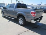 2014 Sterling Grey Ford F150 XLT SuperCrew #92304351