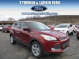 2014 Sunset Ford Escape SE 1.6L EcoBoost 4WD #92304440