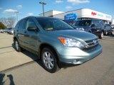 2011 Opal Sage Metallic Honda CR-V SE 4WD #92344286
