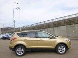 2014 Karat Gold Ford Escape SE 1.6L EcoBoost 4WD #92388483