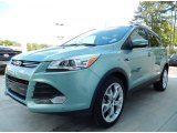 2013 Frosted Glass Metallic Ford Escape Titanium 2.0L EcoBoost #92388472