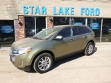 2013 Ginger Ale Metallic Ford Edge Limited AWD #92388858