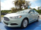 2014 Ice Storm Ford Fusion Hybrid SE #92433669