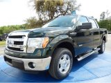 2014 Green Gem Ford F150 XLT SuperCrew #92433663