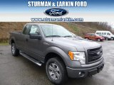 2014 Sterling Grey Ford F150 STX SuperCab 4x4 #92433698