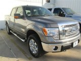 2014 Sterling Grey Ford F150 XLT SuperCrew 4x4 #92475316