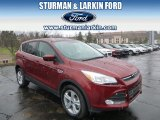 2014 Sunset Ford Escape SE 2.0L EcoBoost 4WD #92522105