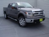 2014 Sterling Grey Ford F150 XLT SuperCrew 4x4 #92522197