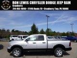 2014 Bright Silver Metallic Ram 1500 Big Horn Quad Cab 4x4 #92550933