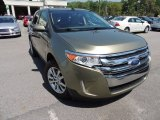 2013 Ginger Ale Metallic Ford Edge Limited #92590833