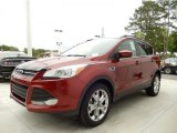 2014 Sunset Ford Escape SE 1.6L EcoBoost #92590603