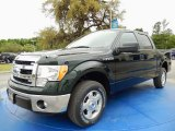 2014 Green Gem Ford F150 XLT SuperCrew #92590587