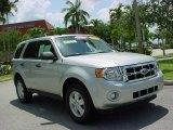 2009 Brilliant Silver Metallic Ford Escape XLT V6 #9236695