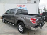 2014 Sterling Grey Ford F150 XLT SuperCrew 4x4 #92747041