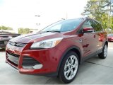 2014 Sunset Ford Escape Titanium 2.0L EcoBoost #92789291