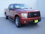 2014 Sunset Ford F150 STX SuperCab #92789523