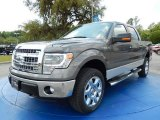 2014 Sterling Grey Ford F150 XLT SuperCrew 4x4 #92832490