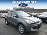 2014 Sterling Gray Ford Escape Titanium 2.0L EcoBoost 4WD #92876234