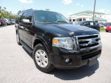 2010 Tuxedo Black Ford Expedition XLT #92876381