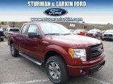 2014 Sunset Ford F150 STX SuperCab 4x4 #92876239