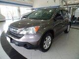 2009 Urban Titanium Metallic Honda CR-V EX 4WD #92939930