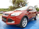 2014 Sunset Ford Escape Titanium 2.0L EcoBoost #93006274