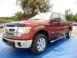 2014 Sunset Ford F150 XLT SuperCrew #93006269