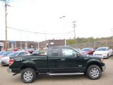2014 Green Gem Ford F150 XLT SuperCab 4x4 #93038686