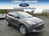 2014 Sterling Gray Ford Escape SE 2.0L EcoBoost 4WD #93090034