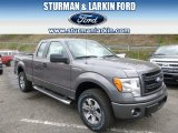 2014 Sterling Grey Ford F150 STX SuperCab 4x4 #93090031