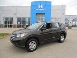 2013 Urban Titanium Metallic Honda CR-V LX AWD #93090447