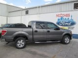 2014 Sterling Grey Ford F150 XLT SuperCrew #93137795