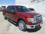 2014 Sunset Ford F150 XLT SuperCrew #93156806
