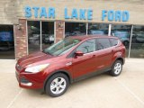 2014 Sunset Ford Escape SE 1.6L EcoBoost 4WD #93161804