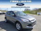 2014 Sterling Gray Ford Escape SE 2.0L EcoBoost 4WD #93197551