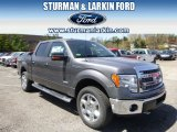 2014 Sterling Grey Ford F150 XLT SuperCrew 4x4 #93197548