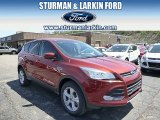 2014 Sunset Ford Escape SE 1.6L EcoBoost 4WD #93197546