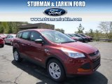2014 Sunset Ford Escape S #93197545