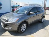 2014 Sterling Gray Ford Escape SE 1.6L EcoBoost #93197424