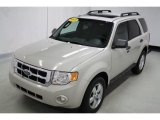 2009 Light Sage Metallic Ford Escape XLT 4WD #93245563