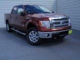 2014 Sunset Ford F150 XLT SuperCrew 4x4 #93245986